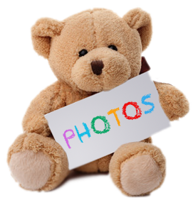 Bear holding photo sign